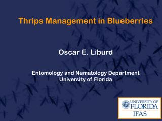 Thrips Management in Blueberries Oscar E. Liburd Entomology and Nematology Department