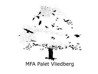MFA Palet Vliedberg