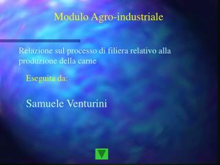 Modulo Agro-industriale