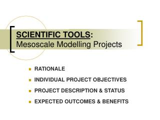 SCIENTIFIC TOOLS : Mesoscale Modelling Projects