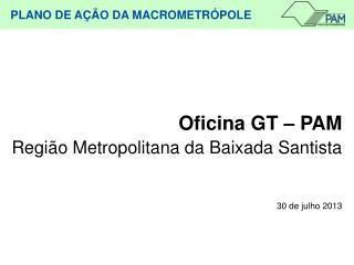 Oficina GT – PAM Região Metropolitana da Baixada Santista  30 de julho 2013