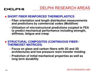 DELPHI RESEARCH AREAS