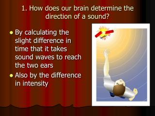 1. How does our brain determine the direction of a sound?