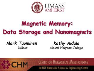 Magnetic Memory: Data Storage and Nanomagnets
