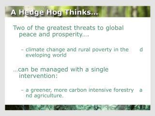 A Hedge Hog Thinks�