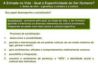 Processo de socializaç ão:  desenvolve a sociabilidade;