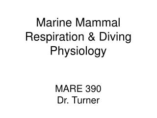 Marine Mammal Respiration & Diving Physiology MARE 390 Dr. Turner