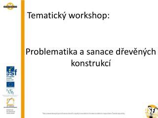 Problematika a sanace dřevěných konstrukcí