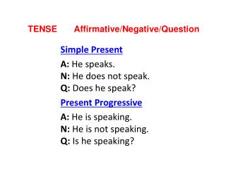 TENSE        Affirmative / Negative / Question