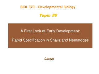A First Look at Early Development: Rapid Specification in Snails and Nematodes