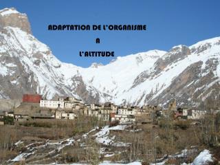 ADAPTATION DE L'ORGANISME                            A                  L'ALTITUDE
