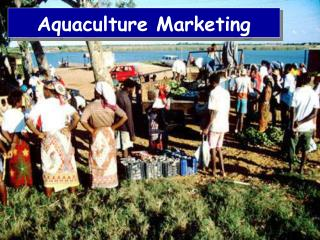 Aquaculture Marketing