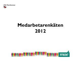 Medarbetarenkäten  2012