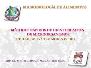 AIDA ELIANETH BERNABÉ MALDONADO 205206