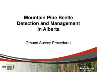 Mountain Pine Beetle Detection and Management in Alberta
