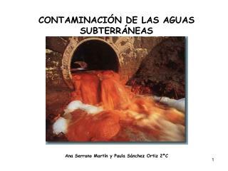 CONTAMINACIÓN DE LAS AGUAS SUBTERRÁNEAS Ana Serrano Martín y Paula Sánchez Ortiz 2ºC