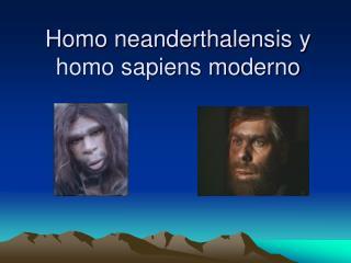 Homo neanderthalensis y homo sapiens moderno