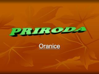 Oranice