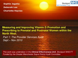 Part 1: The Provider Services Audit Sept – Nov 2010
