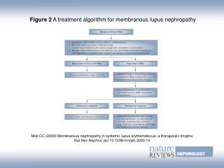Figure 2  A treatment algorithm for membranous lupus nephropathy