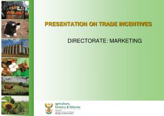 PRESENTATION ON TRADE INCENTIVES