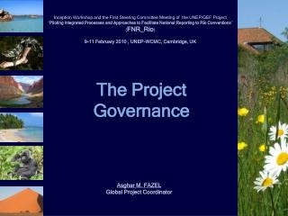 The Project  Governance
