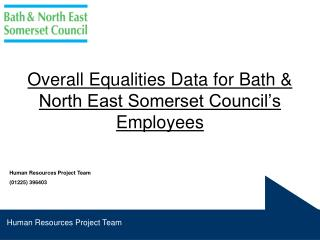 Overall Equalities Data for Bath & North East Somerset Council's Employees