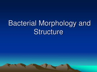 Bacterial Morphology and Structure