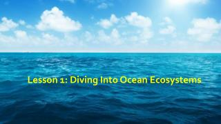 Lesson 1: Diving Into Ocean Ecosystems