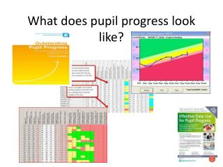 What does pupil progress look like?