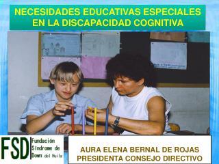 NECESIDADES  EDUCATIVAS  ESPECIALES EN LA DISCAPACIDAD  COGNITIVA