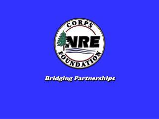 Bridging Partnerships