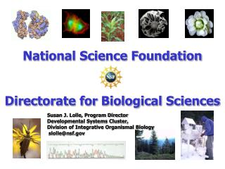 National Science Foundation Directorate for Biological Sciences