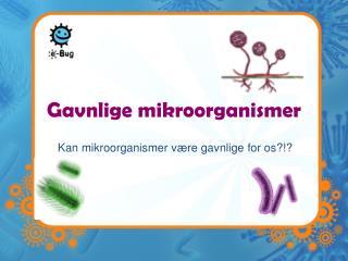 Gavnlige mikroorganismer