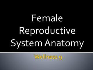 Wellness 9