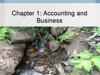 Chapter 1: Accounting and Business