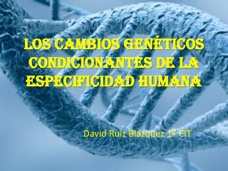 LOS CAMBIOS GENÉTICOS CONDICIONANTES DE LA ESPECIFICIDAD HUMANA