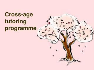 Cross-age tutoring programme