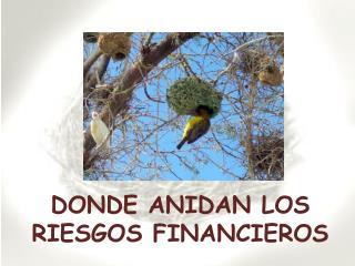 DONDE ANIDAN LOS RIESGOS FINANCIEROS