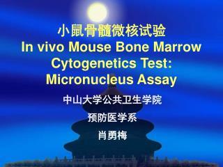 小鼠骨髓微核试验 In vivo Mouse Bone Marrow Cytogenetics Test: Micronucleus Assay