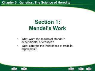 What were the results of Mendel's experiments, or crosses?