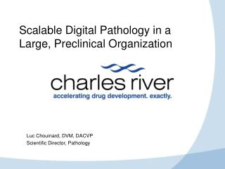 Scalable Digital Pathology in a Large, Preclinical Organization