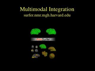 Multimodal Integration surfer.nmr.mgh.harvard