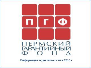 Информация о  деятельности в 2013 г