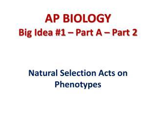 AP BIOLOGY Big Idea #1 – Part A – Part 2