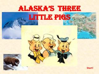 Alaska�s  three little pigs