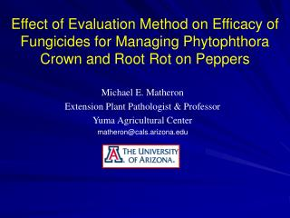 Michael E. Matheron Extension Plant Pathologist & Professor Yuma Agricultural Center