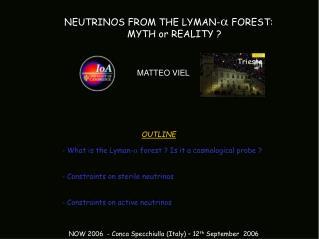 MATTEO VIEL