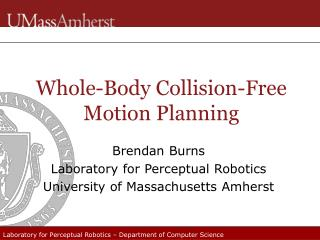 Whole-Body Collision-Free Motion Planning