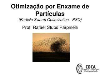 Otimiza��o por Enxame de Part�culas (Particle Swarm Optimization - PSO)